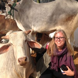 Kelsi Nagy with a cow in India